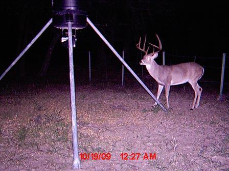 Deer Hunting Mature Bucks