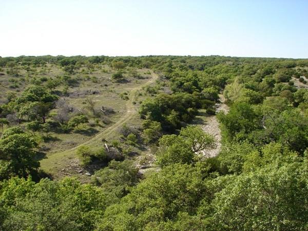 Wildlife Habitat Incentives Program for Management