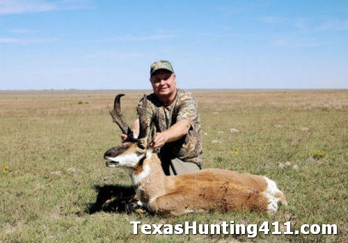 Pronghorn Hunting in Texas - More Permits for Texas Landowners