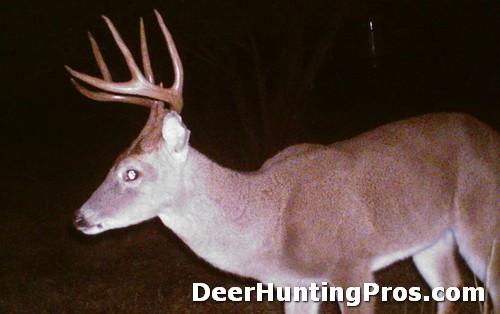 Deer Hunting in San Saba County - Deer Lease in Texas