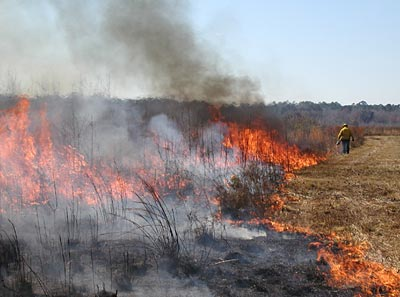 Prescribed Burning Class Workshop for Habitat and Hunting