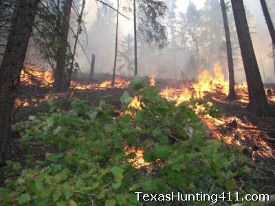 Pineywoods Prescribed Fire Cooperative - East Texas Burning Association