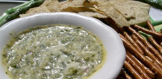 Jalepeno Cilantro Dip Recipe - Venison Recipes