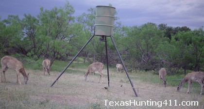 Improve Deer Hunting on Deer Lease in Texas
