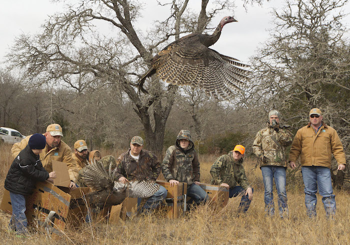 Turkey Stocking in Texas